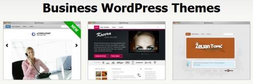 Красивые платные темы wordpress от bizzthemes